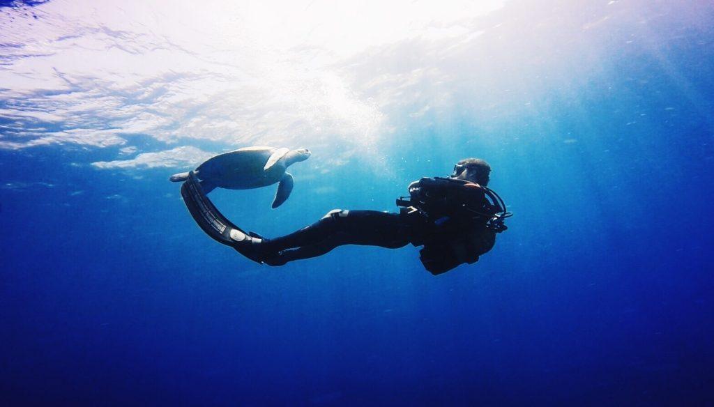 Ocean, co w sobie kryje